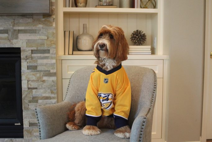Reagandoodle is ready to cheer on the Nashville Predators