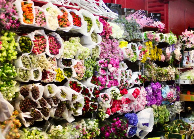 Schedule a trip to the NYC Flower District