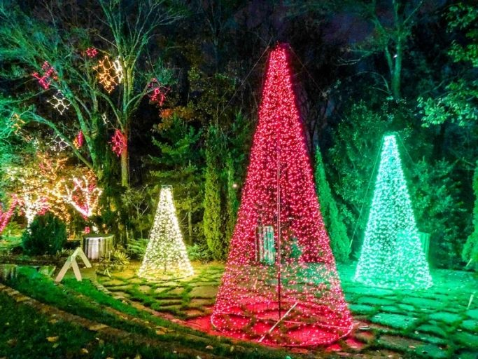 Holiday lights at Cheekwood in Nashville