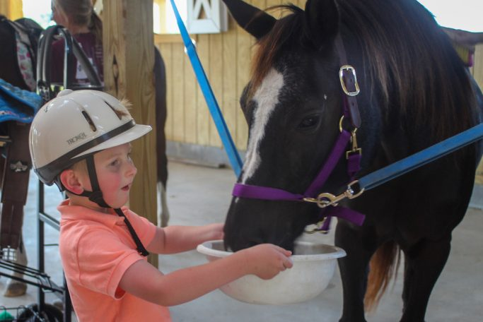Feeding My Horse at Grace Rides Horse Therapy
