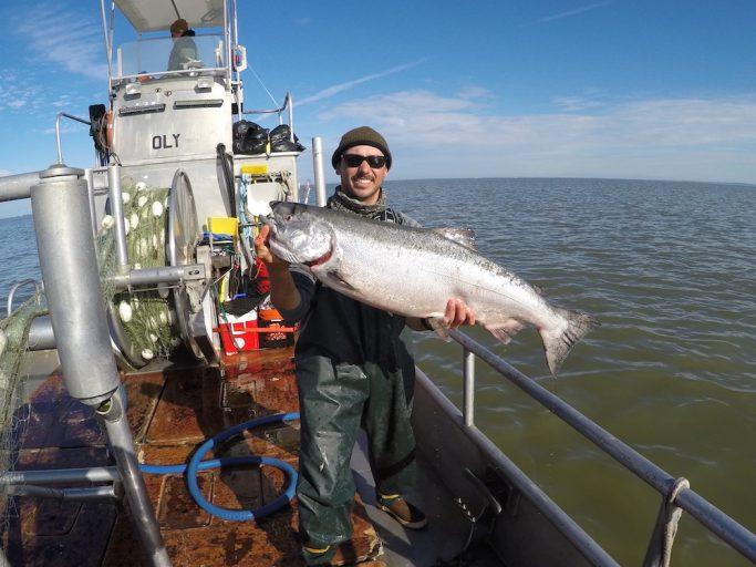salmon fishing in bristol bay alaska