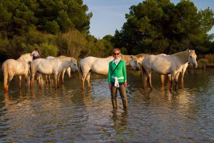 Camargue horse photography
