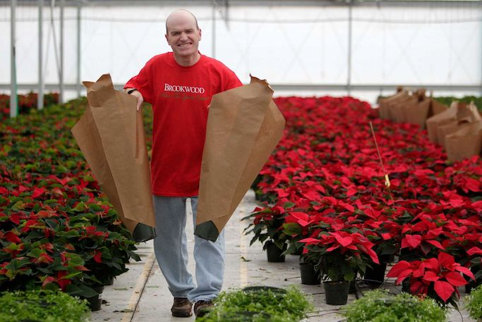 Poinsettia Greenhouse at Brookwood